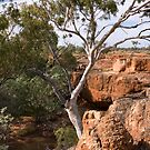 Skull Hole, Bladensburg NP by Blue Gum Pictures by Blue Gum Pictures