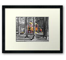 Jungle Gym Framed Print