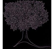 tree [reverse purple] Photographic Print