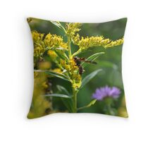 Wasp on yellow wildflowers Throw Pillow