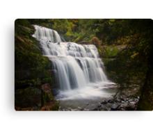 Liffey Falls, Tasmania Canvas Print