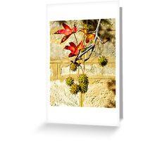 Flame Tree Greeting Card