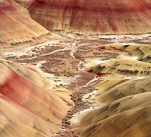 Painted Hills by DawsonImages