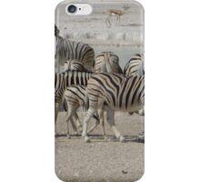 Zebras, Etosha National Park, Namibia iPhone Case/Skin