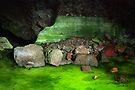Ice Cave by Vicki Pelham