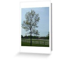 Tree and White Fence Greeting Card