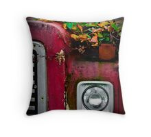 Old Beauty Throw Pillow
