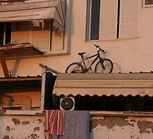 The Bicycle  by Nira Dabush