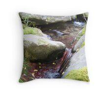 Rocky Mountain Fresh Throw Pillow