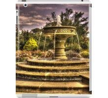 Water Fountain iPad Case/Skin