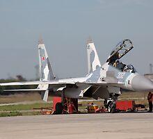 su-30MK ready for flight by sergeylukianov