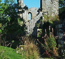 Jervaulx Abbey 5 by WatscapePhoto