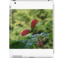 Maple Seeds iPad Case/Skin