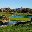 Wild Horse Golf Course by loiteke