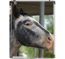 The Touch..... iPad Case/Skin