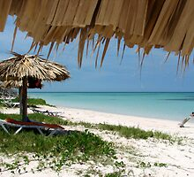Beach at Cayo Jutias, Cuba by ecotterell