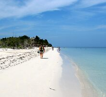 Beach at Cayo Levisa, Cuba by ecotterell