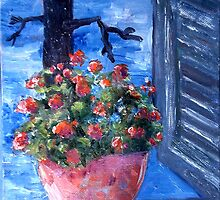 pot plant on windowsil by Rosa  D'Alessio