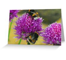 Sharing the Pollen Greeting Card
