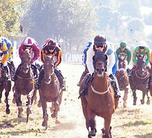 Races on a fine day  by Paul Woods