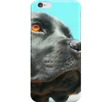 Watchful iPhone Case/Skin