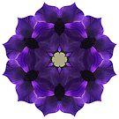 Purpleplus by Fay270