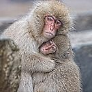 Mothers Love 11 by Anne Young