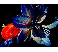 Mix of unique color Photographic Print