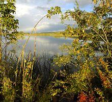 La Veta Town Lake, September by Fletcher Hill