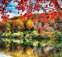 Colorful Trees  Reflections in a Lake by George Oze