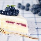 Blueberries on Cheesecake by the-novice