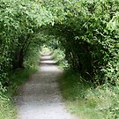 Tunnel of Leafy Green by Wolf Read
