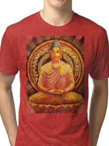 buddha - 2009 Tri-blend T-Shirt