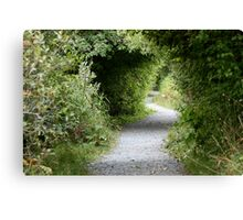 A Winding Path Canvas Print