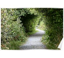 A Winding Path Poster