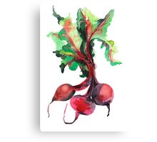 Watercolor image of beet root on white background.  Canvas Print