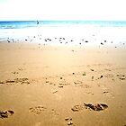 Sand 'n Surf by Sarah Jones