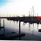 Cresent City Harbor at Sunset by ShutterlyPrfct
