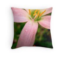 Fade to Pink Throw Pillow