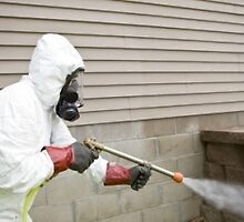Selecting the Best Bed Bug Removal Ottawa by angila