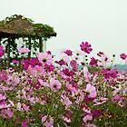 Cosmos Pagoda by Bobby McLeod