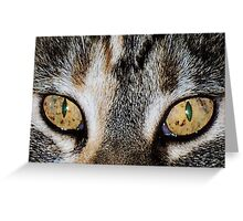 Moxies Eyes Greeting Card