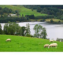 Scottish Countryside Photographic Print