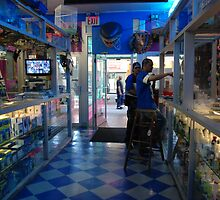 exotic pet store in brooklyn by piffpictures