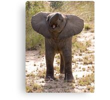 Baby Elephant Greeting Canvas Print