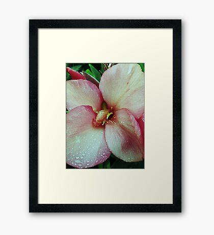 Disney Flower Framed Print