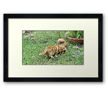 ....and clean out your ears!! Framed Print