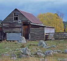 Aussie Shearing Shed by Terry Everson