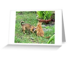 Well YOU need a manicure, Ginger! Greeting Card