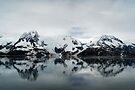 Breathless ~ Kenai Fjord by Barbara Burkhardt